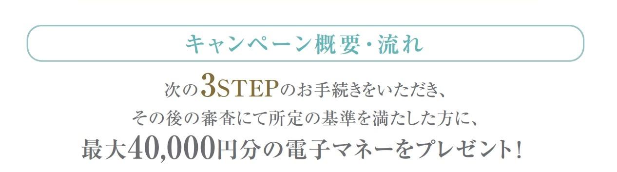 3steptitle.jpg