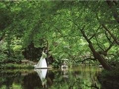 最短20日・2名でかなえる結婚式⁉ コロナ禍のカップルへ贈る、フォトウエディングプラン登場!