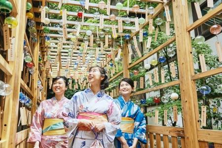 約2,000個の江戸風鈴が夏を彩る人気祭事『川越氷川神社 縁むすび風鈴』が7月6日(土)から開催!