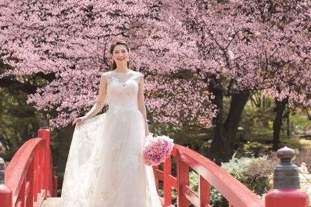 2020年3月28日(土)開催! ホテルニューオータニの『春爛漫! ハーフコーステイスティング付きお花見グルメフェア』
