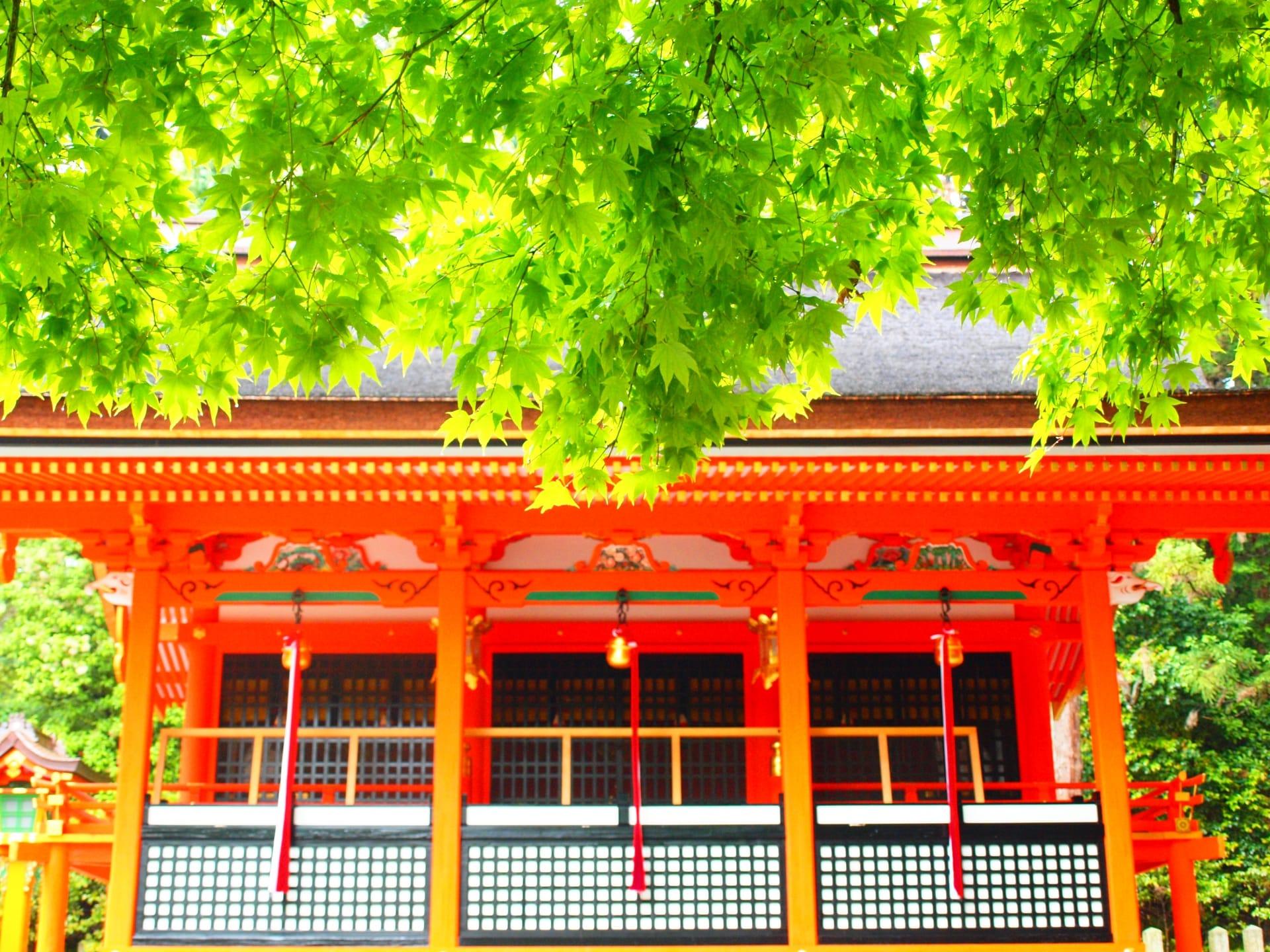 新婚旅行京都