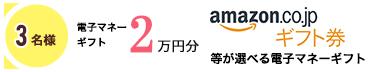 3名様 電子マネーギフト 2万円分 amazon.co.jp ギフト券 等が選べる電子マネーギフト