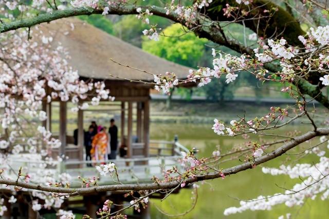 奈良のおすすめフォトウエディング・前撮りスタジオ