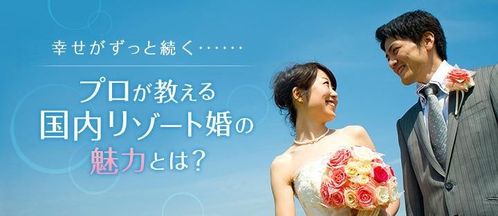 kokunaimiryoku1.jpg