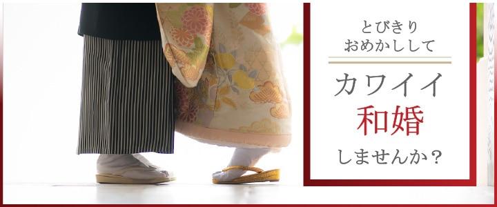w_banner_1_720300.jpg