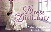プレミアムクラブドレス辞典