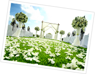 ガーデン・グリーンウエディングイメージ