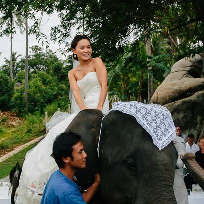 象の背に揺られ優雅なエレファントライドを満喫