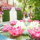 色鮮やかな南国の花々で大切なゲストをお出迎え