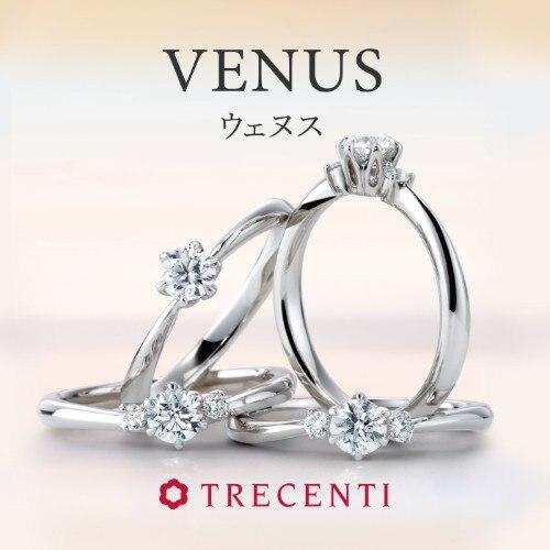 VENUS(ウェヌス)