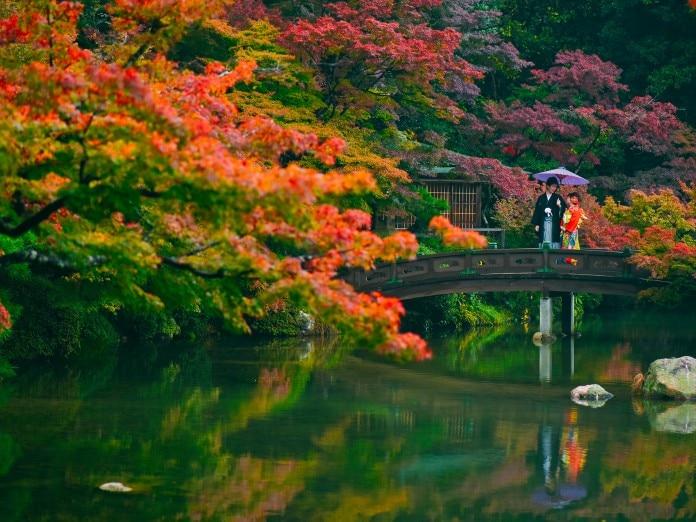 日本庭園での前撮りは紅葉の季節に人気。二人の和装がよく映えます。<br>【ウエディングドレス・和装・その他】<前撮り>チャペルでの撮影やロケーションフォトも
