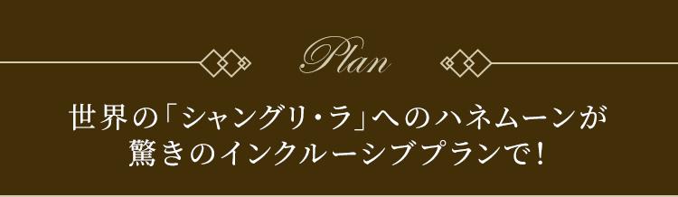 Plan 世界の「シャングリ・ラ」へのハネムーンが驚きのインクルーシブプランで!
