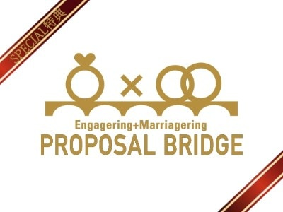proposalbridge-bridgeginza